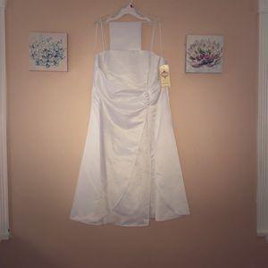 Ivey dress sized XXL US by dollar